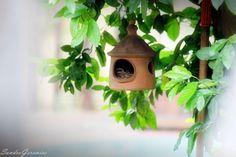 Casa de passarinho.