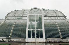 Haarkon Kew Gardens Palmhouse Palm Temperate Glasshouse Greenhouse Plants Greenery London Visit