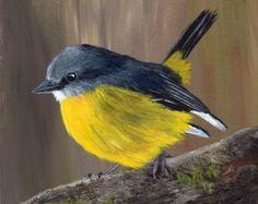 VENTA Robin Bird Art Wildlife SFA pájaro retrato por ArtDownUnder