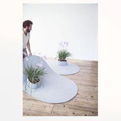 #welcometreecarpet #antonioarico