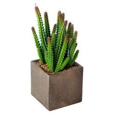 """Faux Sonoroan Highlands finger cactus arrangement in a weathered cube planter.  Product: Faux cactus arrangementConstruction Material: Plastic and paper pulpColor: Green and brownDimensions: 9"""" H x 3.5"""" W x 3.5"""" D"""