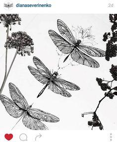 dragonfly tattoo *-*