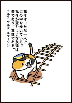KinNeko_2015060503