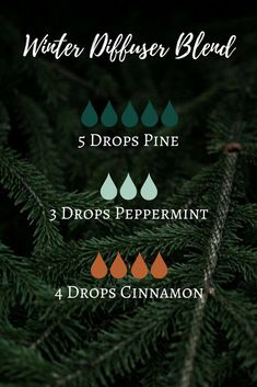 essential oil blends for anxiety doterra essential oil diffuser recipe for fatigue Essential Oils Christmas, Pine Essential Oil, Essential Oil Diffuser Blends, Doterra Essential Oils, Young Living Essential Oils, Yl Oils, Aroma Diffuser, Yule, Perfume Fahrenheit