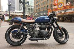 Triumph Cafe Racer, Cafe Racer Motorcycle, Triumph Motorcycles, Custom Motorcycles, Cafe Racers, Triumph Bonneville T100, Triumph Scrambler, Pearl Logo, Favorite Son