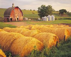 Image: States of Summer - Iowa (© Tom Till/SuperStock/Corbis)