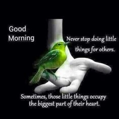 Morning Good Morning Friends Quotes, Morning Words, Good Morning Cards, Good Morning Gif, Morning Greetings Quotes, Good Morning Picture, Good Morning Messages, Good Morning Wishes, Good Morning Images