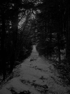 Winter Forest Country Roads, Celestial, Sunset, Black And White, Darkness, Outdoor, Winter, Outdoors, Winter Time