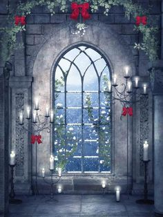 Meego Arch Church View Window Photography Backdrops - BG-065