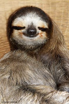 """I'm sexy as hell, who wouldn't be happy?"" 