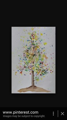 Tree for aba