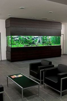 20 Modern Aquarium Design for Every Interior 20 Modern Aquarium Design for Every Interior Fish Aquarium Decorations, Aquarium Set, Aquarium Design, Saltwater Aquarium, Home Design, Amazing Aquariums, Estilo Interior, Sleeping Too Much, Contemporary Apartment