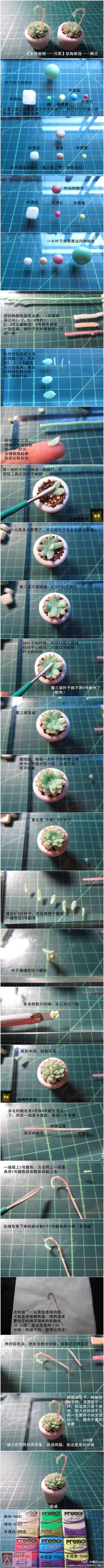 """""""Succulents"""" Fimo works"""