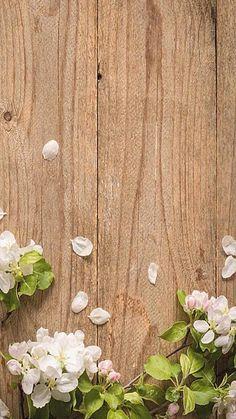 Free Wallpaper Backgrounds, Framed Wallpaper, Flower Background Wallpaper, Flower Phone Wallpaper, Pastel Background, Flower Backgrounds, Beautiful Flowers Wallpapers, Simple Wallpapers, Pretty Wallpapers