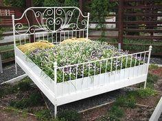 Hochbeet mit Pflanzen in einem Holzbett