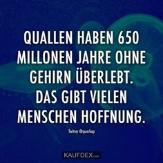 Das erinnert mich an was. Girl Quotes, Funny Quotes, German Quotes, Word Pictures, Word Up, True Words, How To Look Pretty, Sarcasm, Quotations