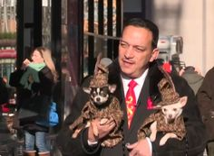 Pet couturier Anthony Rubio arrives carrying his muses #Celebripups Bogie and Kimba wearing couture ensembles in tweed, to an event while being filmed for a BBC program in New York City.