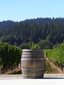 West Wines in beautiful Dry Creek Valley, Sonoma County, CA