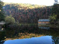 Toplitzsee Lake District, Austria, Mountains, Nature, Travel, Nature Pictures, Landscapes, Road Trip Destinations, Naturaleza