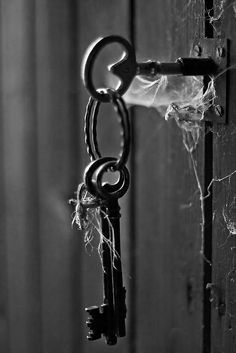 Writing Prompt: Some doors are locked for a reason...