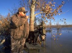 For hunters looking for Alabama duck hunting information, there is the Alabama state website and many other sites that have duck hunting available.