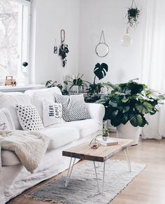 Ein bisschen Urwald im Wohnzimmer | SoLebIch.de - Foto von Mitglied BohoandNordic #solebich #interior #einrichtung #inneneinrichtung #deko #decor #couchtisch #kissen #decke #sofa #couch #urbanjungle