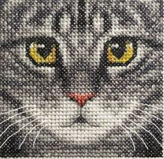Details about Grey TABBY CAT, KITTEN, Detailed Face ~ Full counted cross stitch…