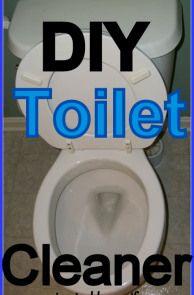 DIY Toilet Cleaner - just vinegar and baking soda!