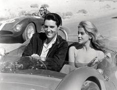 Elvis Presley, Joanna Lumley, James Dean, Elizabeth Taylor, Twiggy, Grace Kelly, Entertainment Center, Daniel Oliveira, Ann Margret Photos