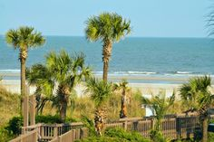 Low country beaches in South Carolina