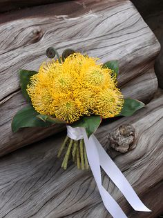 Mono-botanical pincushion protea bouquet - except in orange Protea Bouquet, Hand Bouquet, Floral Bouquets, Wedding Bouquets, Bridesmaid Bouquets, Yellow Wedding Flowers, Wedding Cakes With Flowers, Floral Wedding, Cake Flowers