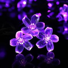 Patio Decor Solar Powered String Lights Outdoor Waterproof 50 LED Purple Flower Fairy Light Home Decorative for Xmas Tree Garden Fence Yard Christmas String Lights, Solar String Lights, String Lights Outdoor, Light String, Outdoor Lighting, Garden Trees, Lawn And Garden, Flower Fairy Lights, Waterproof Led Lights