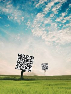 QR Trees by morgantj, via Flickr