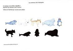 les animaux de la  banquise, jeu