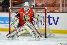 Canadiens Prospect Zach Fucale Will Fix Canada's World Junior Goaltending Problem - http://thehockeywriters.com/canadiens-prospect-zach-fucale-will-fix-canadas-world-junior-goaltending-problem/