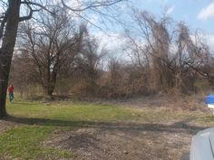 Even with no leaves, the brush was too thick to walk through before