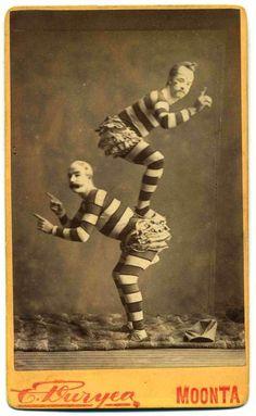 MoontaAcrobats @ www.rivenrod.com: BrainSparks for grown-ups