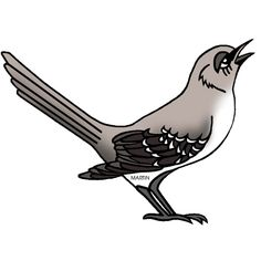 Ptáci - ŠKOLÁKOV Free Clipart Images, Clip Art, Birds, Elementary Science, Journal Ideas, Animals, Panda, Florida, Animales