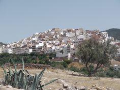 la ville sainte de moulay idriss a une quarantaines de kilometres de fes moulay idriss qui était le fondateur de fes et arrière petit fils de mahomet