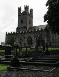 Limerick Cathedral St Mary' Church of Ireland Erin Go Braugh, Scottish English, Church Of Ireland, Limerick Ireland, England Ireland, Irish Roots, Cathedral Church, Irish Eyes, Chateaus