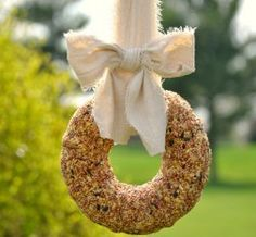Basic Birdseed Wreath | AllFreeHolidayCrafts.com