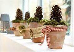 pine cones decorations - Bing Images