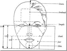 Facial proportions - Five eyes make up the width of a typical human face. Description from indulgy.com. I searched for this on bing.com/images