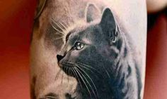 fotos-de-tatuagens-de-gatos-galera pet