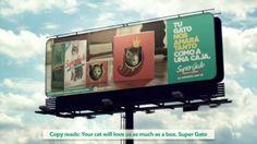 SUPERGATO - Changement de packaging : la boîte pour séduire les chats