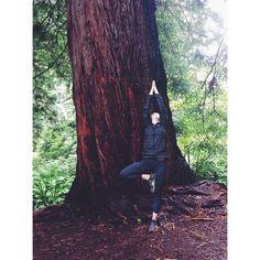 Tree pose w/ the redwood trees in the SF Botanical Garden #yoga #treepose