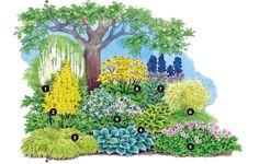 Under woods planting - Garten - Pflanzen Potager Garden, Garden Landscaping, Garden Fire Pit, Indoor Trees, Garden Steps, Diy Garden Projects, Plantar, Plantation, Begonia