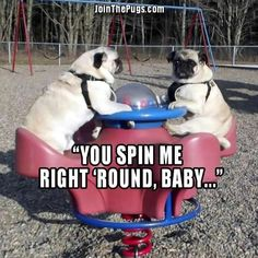 You spin me right round, baby, right round... like a rocket, baby, right round, right round. Soz, got a bit carried away...