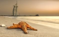 Point of View: Amazing Photos by Dany Eid - Inspiration Grid