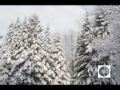 DANS LA NATURE Ep.42 : La nature en hiver Nature Sauvage, Wild Nature, Wilderness, Canada, Outdoor, Winter, Outdoors, Outdoor Games